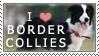 Border Collie Stamp by chinarose93