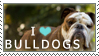Bulldog Stamp by chinarose93