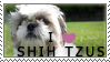 Shih-Tzu Stamp by chinarose93