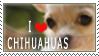 Chihuahua Stamp by chinarose93
