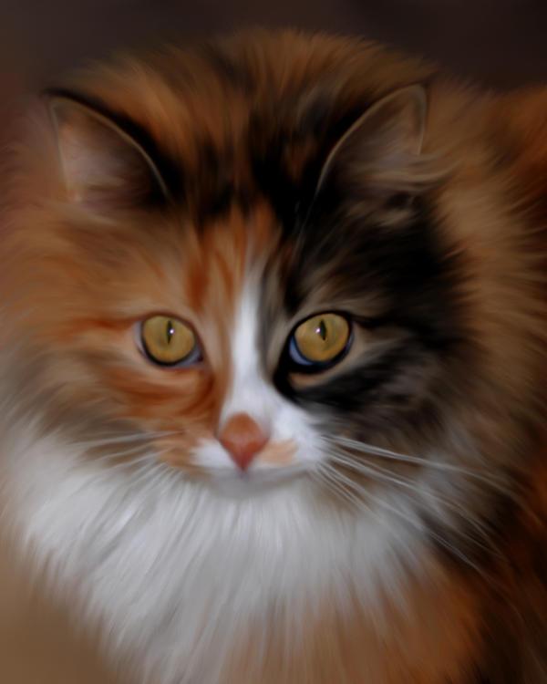 Bodhi Cat by Joe-Maccer