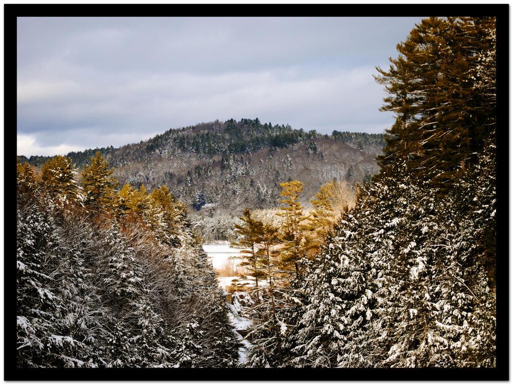 Winter by Joe-Maccer