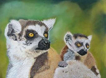 Lemurs (ref. photo by emmanuel Keller) by dierenpastels