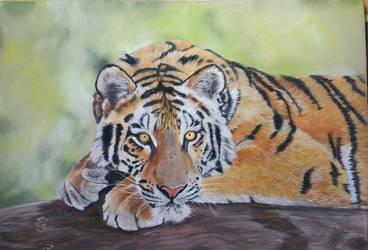 Tiger (Ref. photo Emmanuel Keller) by dierenpastels