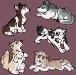 Husky Adoptables CLOSED