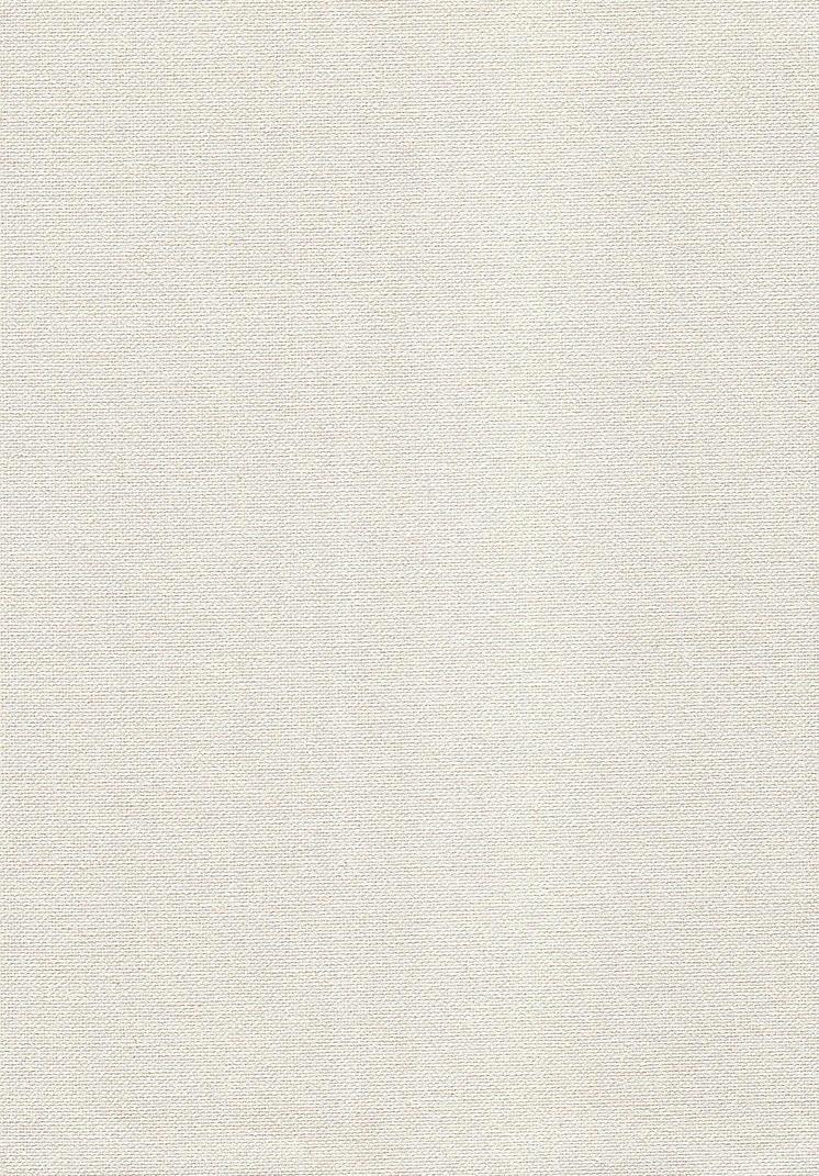 Canvas Texture by powerpuffjazz