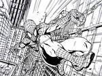 Spiderman City Cruise
