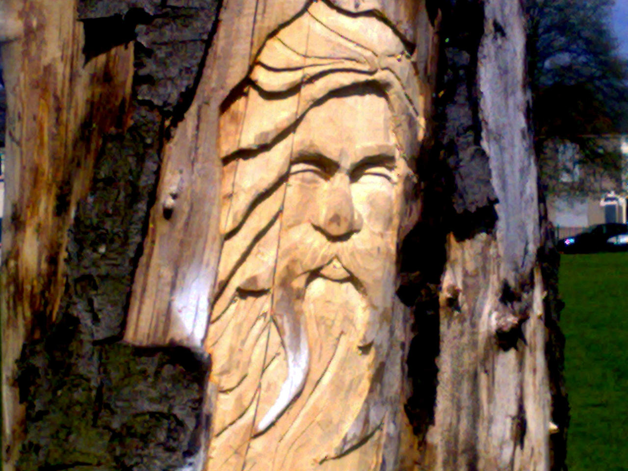 Tree Spirit Wood Carving by Mudchild