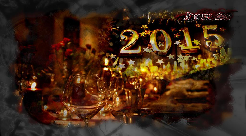 Nemir-Mirjana Vujicic - Page 5 New_year_2015___by_nemesis_gaoh-d8c24cn