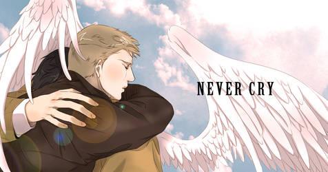 Never Cry by Pra88