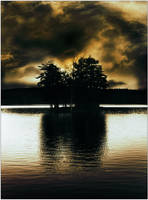 Wetlands by p0m