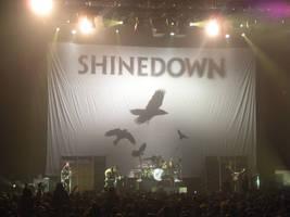 Shinedown Birdies