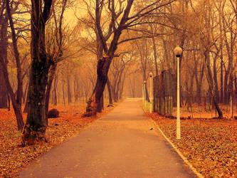 Path by hopeless2012