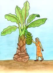 The Banana Tree by Y9ssra