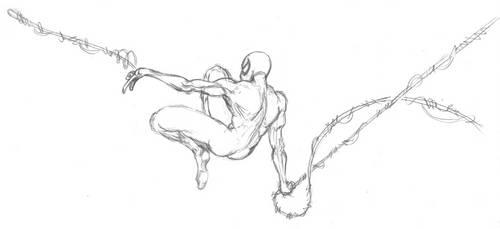 Spider Sketch - large