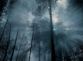 Premade Background 222 by AshenSorrow