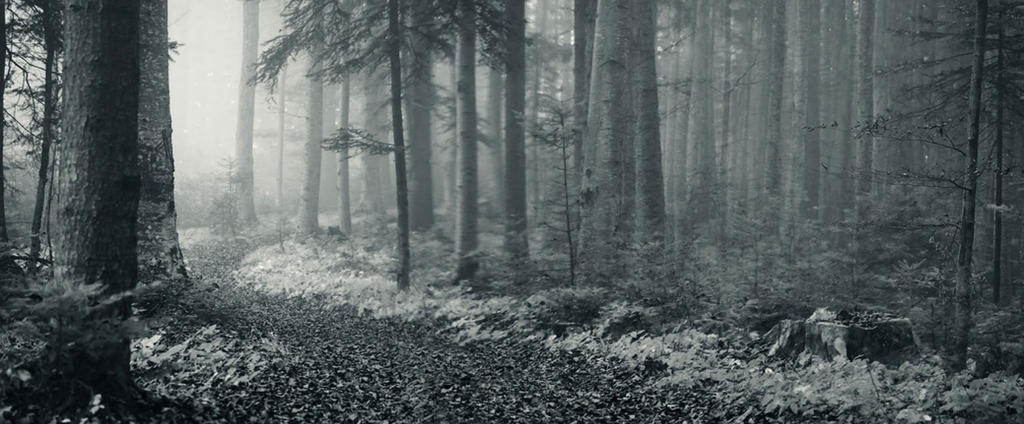 Premade Background 318 by AshenSorrow
