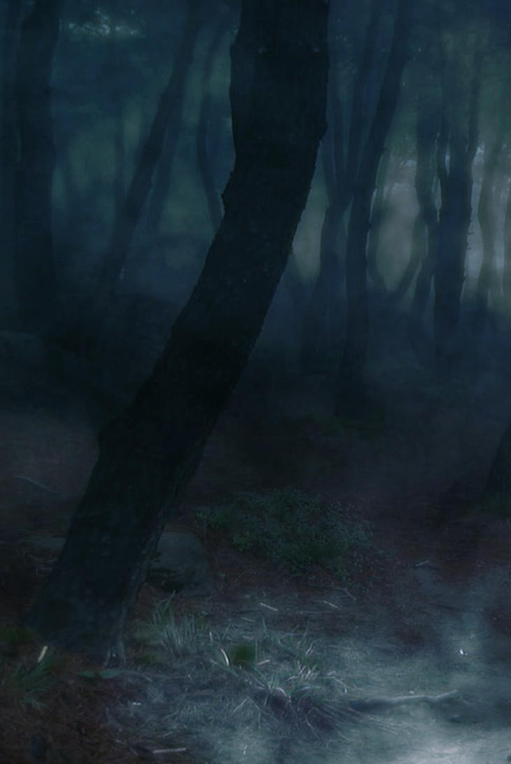 Premade Background 770 by AshenSorrow