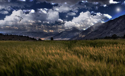 Premade Background  1090 by AshenSorrow