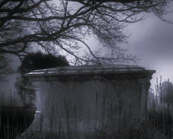 Premade Background  1233 by AshenSorrow