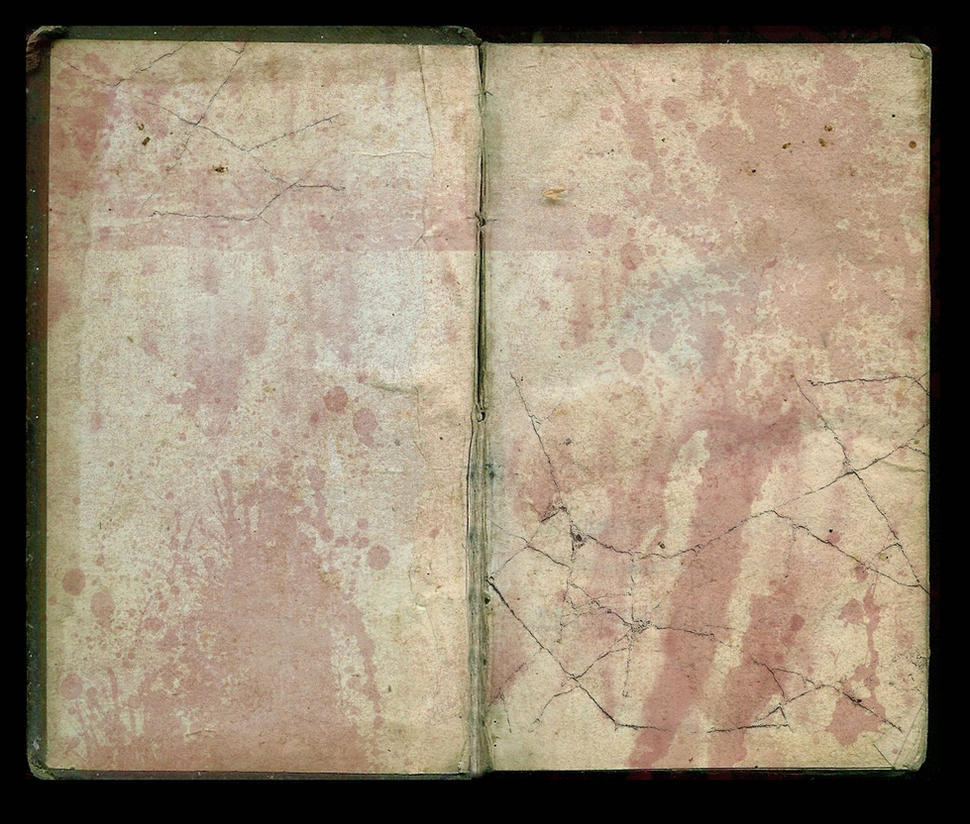 Old Bloodstained Book by AshenSorrow