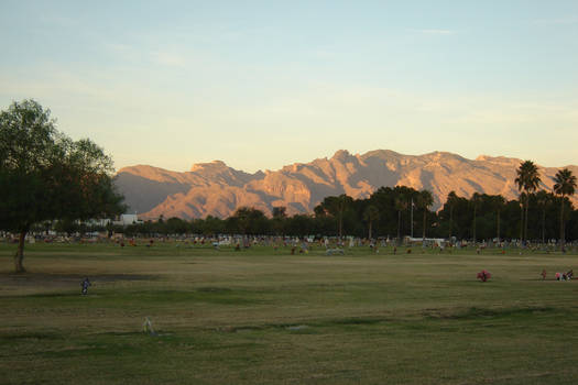 AshenSorrowStock-Cemetery9