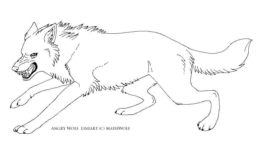 Line Drawing Angry Face : Angry wolf face lineart imgkid the image kid