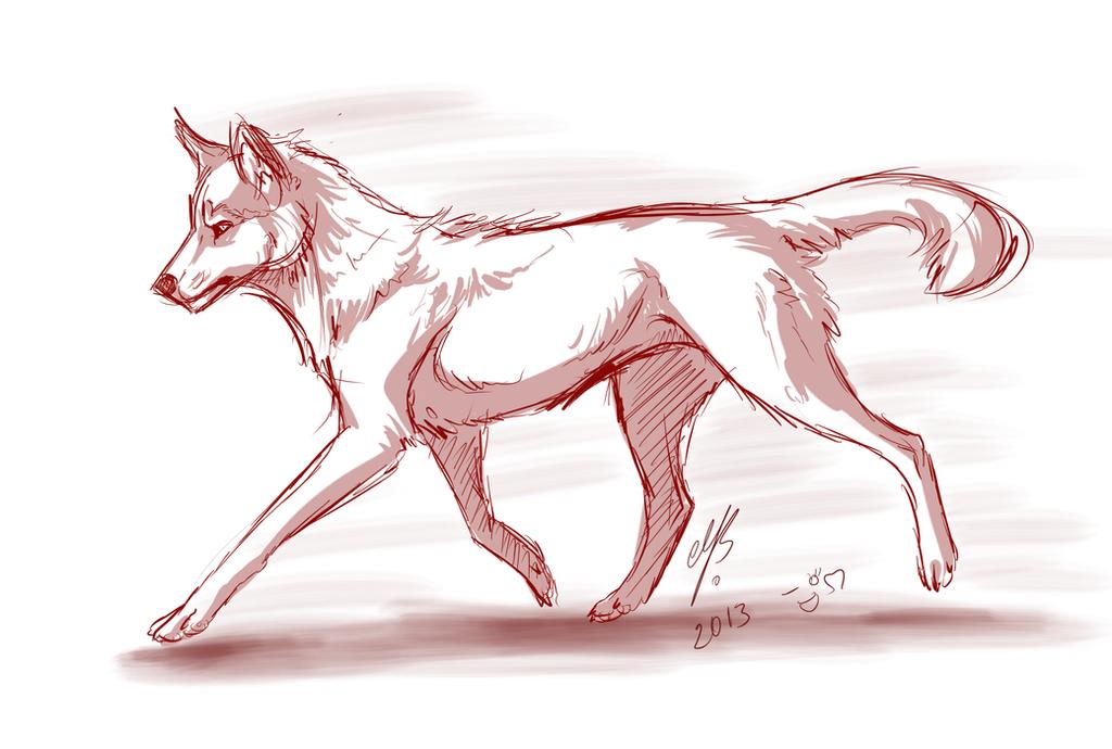 Red wolf by MayhWolf