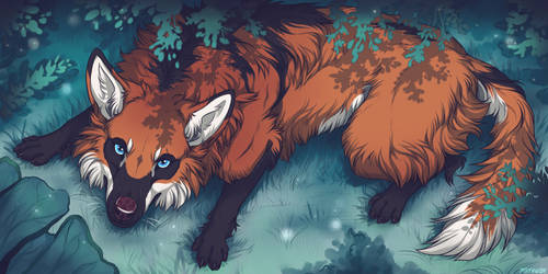 YCH - Maned Wolf