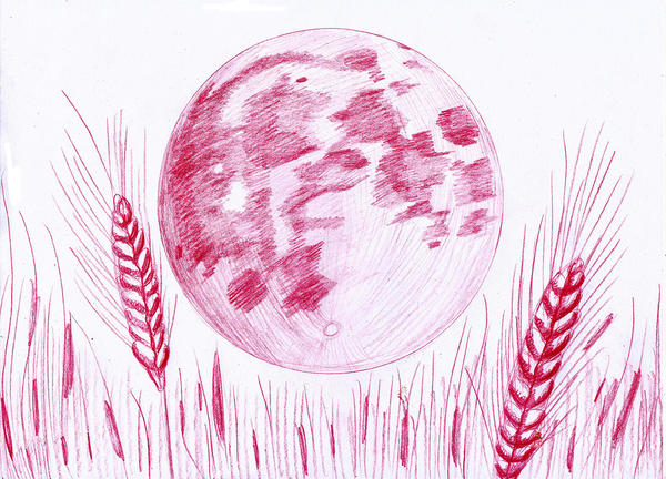 Harvest Moon by Cpr-Covet