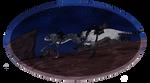 Moon and Syrah Skunk Race