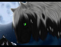 These eyes by Utakame