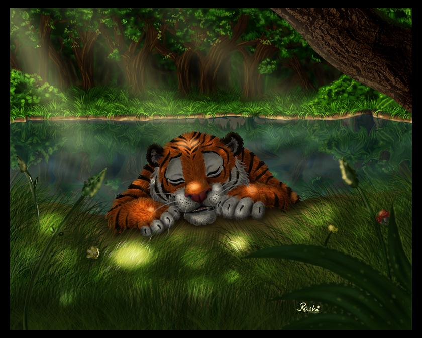 The Tiger's Sanctuary