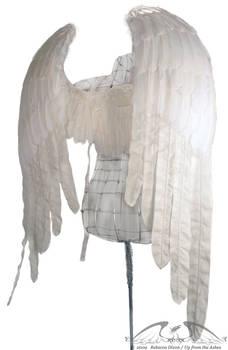 Zadkiel White Angel Wings