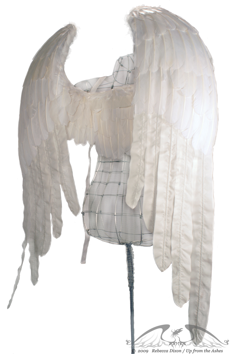 Realistic Angel Wings Side View Zadkiel white angel wings by