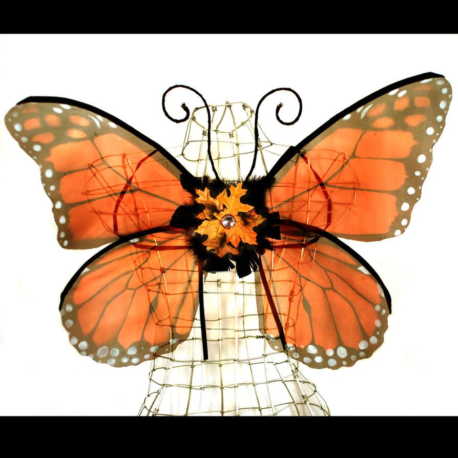 Monarch butterfly wings - photo#23
