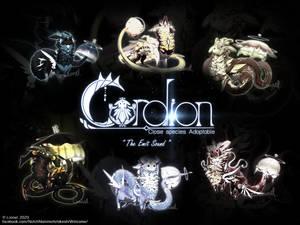 [OPEN] Set price adoptable CS:Cordion