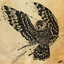 Ink Owl by CR0M3R0