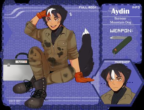 AW - Aydin