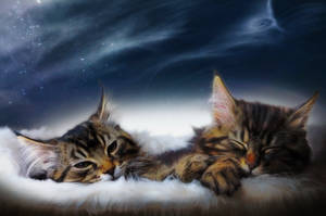 Sweet Dreams... by Manu34