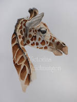 Giraffe - watercolor by LittleMissRaven