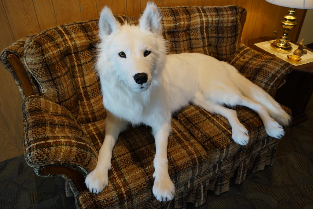 white wolf faux taxidermy sculpture by chibudgielvr on deviantart. Black Bedroom Furniture Sets. Home Design Ideas