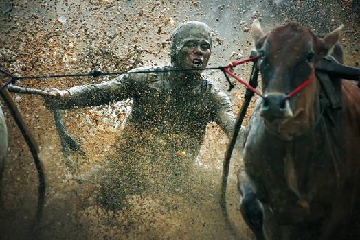 cow race jockey