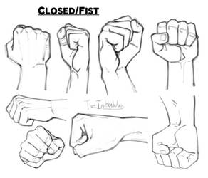 Hand References: Fists