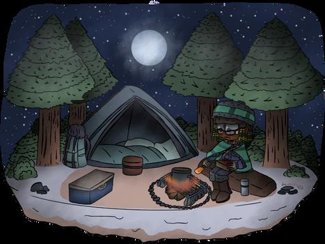 Poptropica - Winter Camping