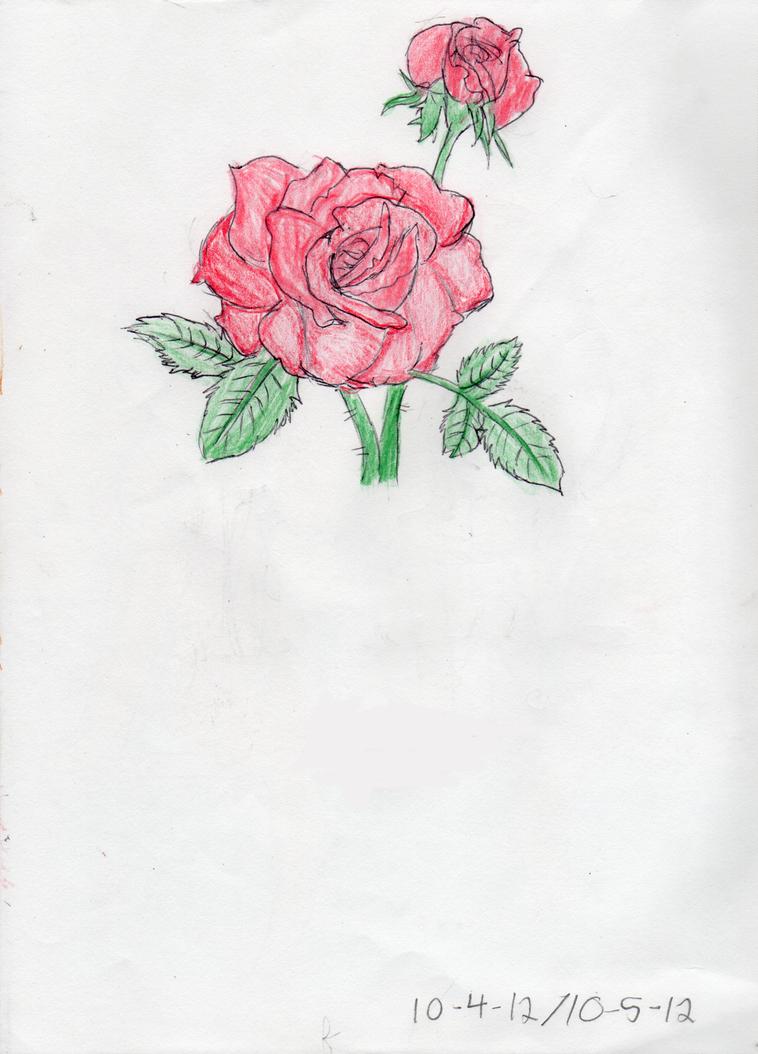 Rose by Blue-Ink-Splatter