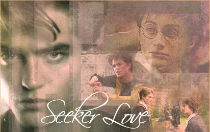 Seeker Love by Harry-x-Cedric