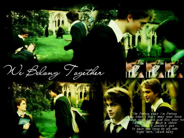 Harry x Cedric Wallpaper by Harry-x-Cedric