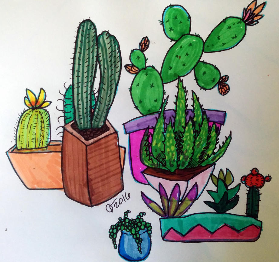 Succulents by Read-the-Wind
