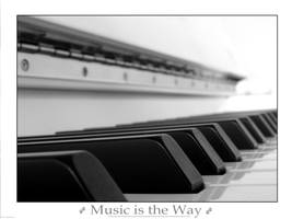 Music is the Way by david11